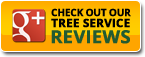 Best Tree Care Google Reviews