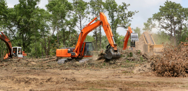 lot land clearing