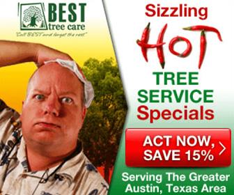 Summer Austin Tree Service